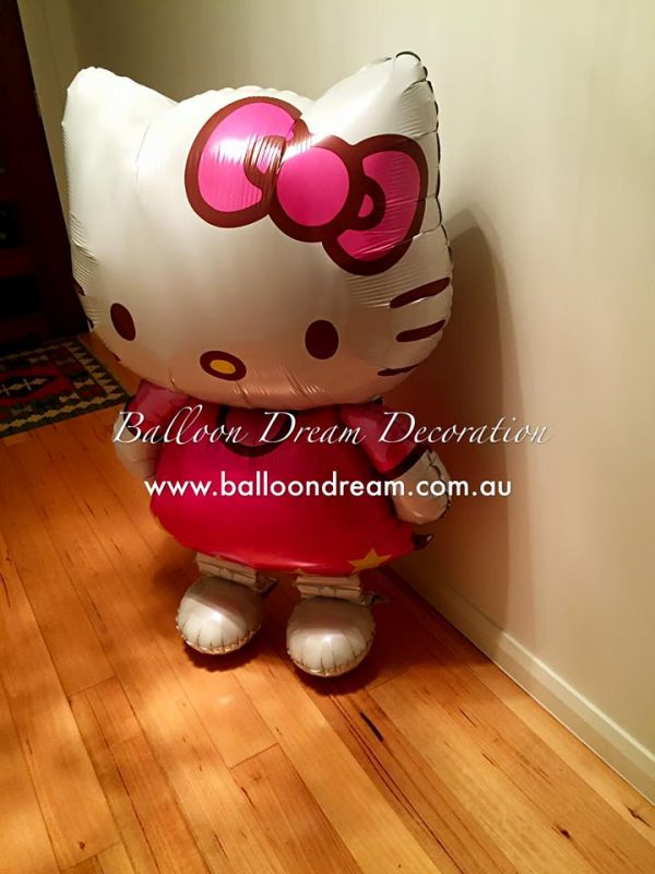 Balloon Dream Decoration