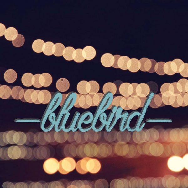 Bluebird Media