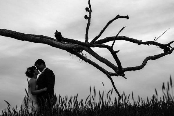Paul Stevens Photographer