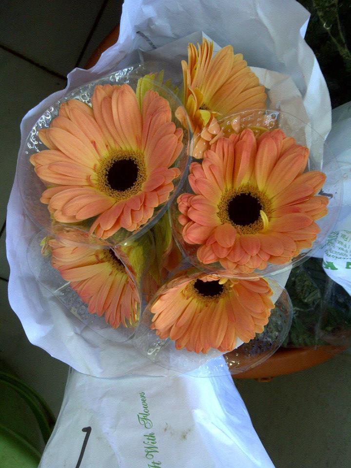 Wahana Bali Flora