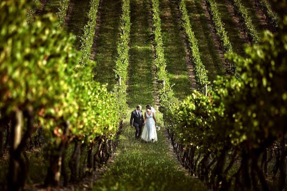 melbourne-yarra-valley-wedding-venue-Immerse-Winery-country-style-winery