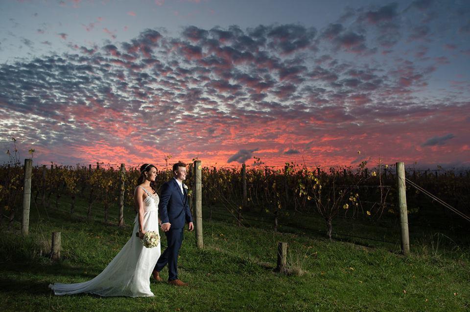 melbourne-yarra-valley-wedding-venue-Oakridge-Wines-country-style-Rustic-vineyard