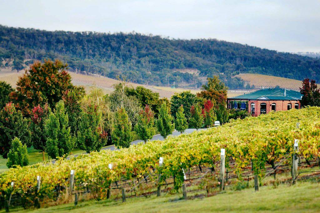 De Bortoli Wines - Wedding Venue, Dixons Creek, Yarra Valley - Parties2Weddings