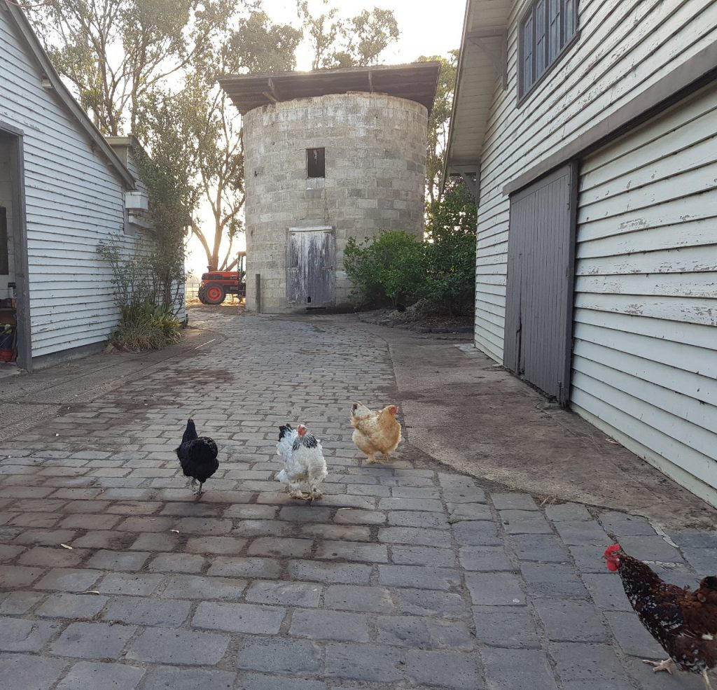 Melbourne Yarra Valley Family Getaway Olinda Yarra Weddings Country Farm