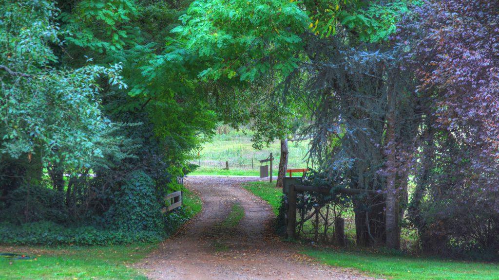 Aspens Springs Farmstay
