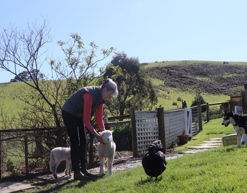 Anniversary or School holidays or Family Getaway at Johanna River Farm Cottages