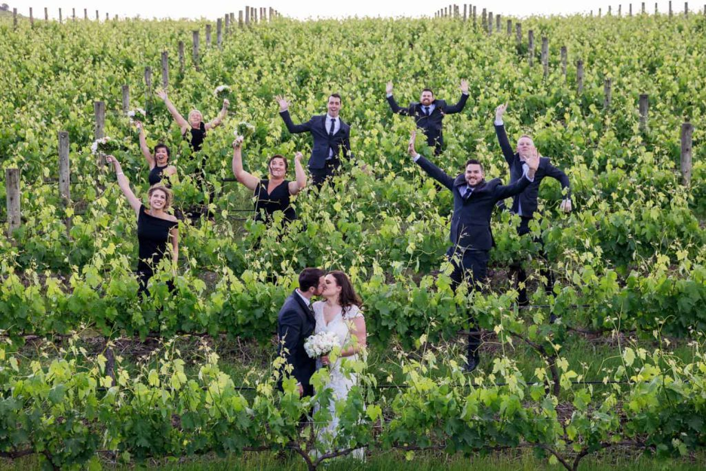 Wedding couples, groomsmen, and bridesmaid among the vines rows ant Vines The Yarra Valley