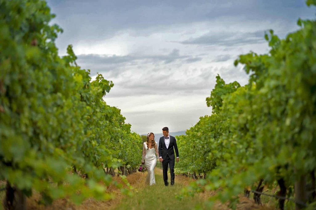 A wedding couple is walking amid the grapevines rowsn at Vines at The Yarra Valley