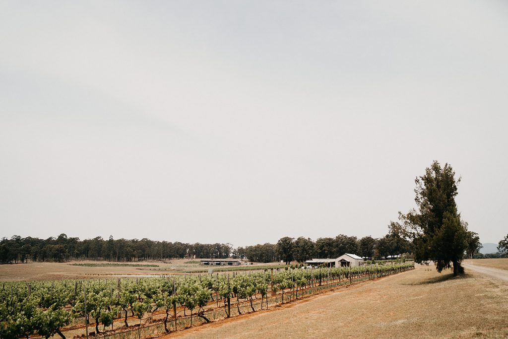 Bimbadgen wineries and barn from afar under the daylight