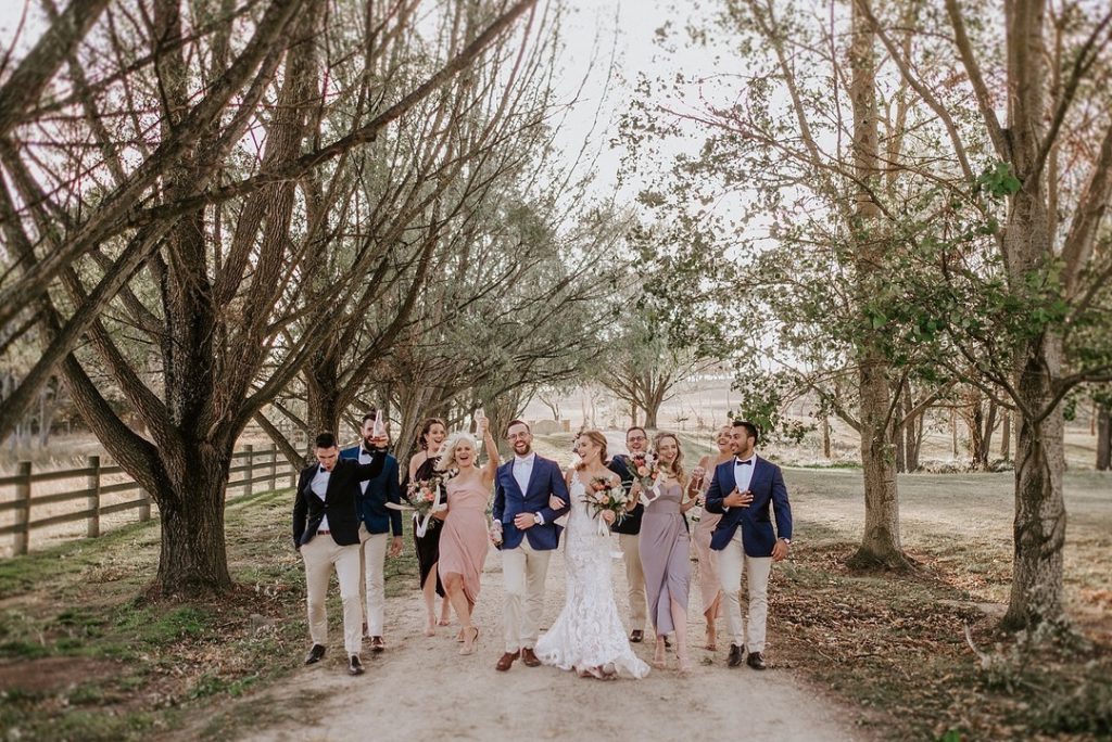 Wedding couple, groomsmen, bridesmaids walk on the alley of trees