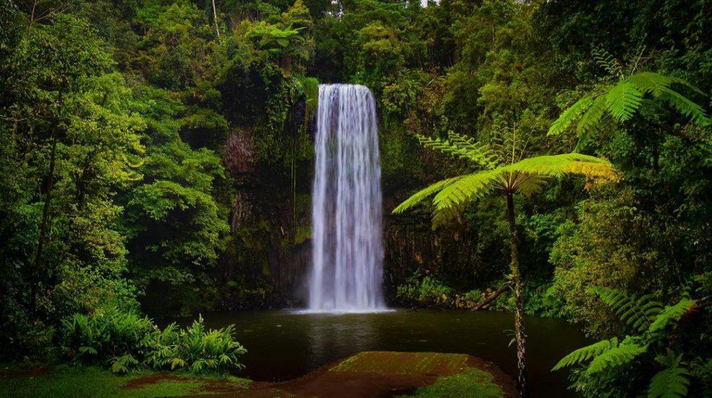 Best Camping Spots - Millaa Millaa - Cairns - Parties2Weddings